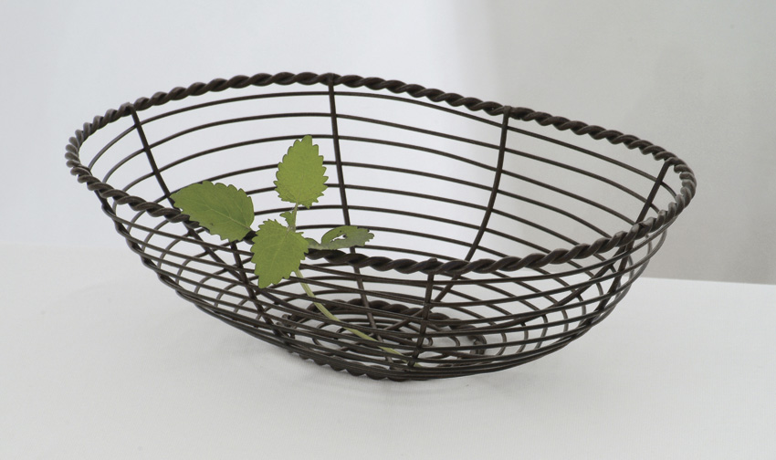 "10"" x 7"" Oval Black Wire Basket, 3"" Deep"