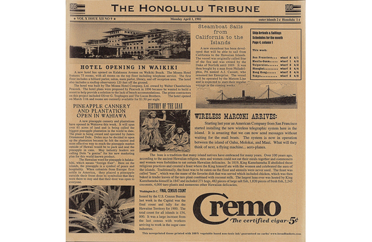 "12"" x 12"" Food-Safe Hawaii Newsprint Liner, Brown"