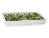 """Full Size Fit Perfect™ Stackable Food Pan, 2.5"""" deep, 10 qt."""